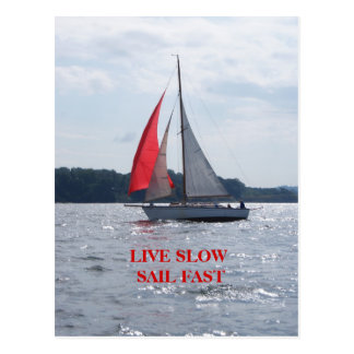 Live Slow Sail Fast Postcard