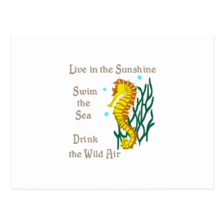 LIVE SWIM DRINK POSTCARD