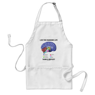 Live The Examined Life Think & Reflect (Brain) Adult Apron