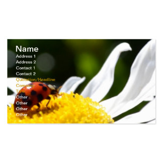 Live your Dreams Business Card Templates