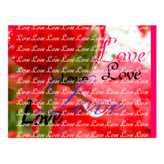 Lively Red Postcard