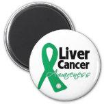 Liver Cancer Awareness Ribbon Fridge Magnet