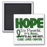 Liver Cancer HOPE 1 2 Inch Square Magnet