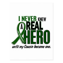 Liver Cancer NEVER KNEW A HERO 2 Cousin Postcard