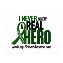 Liver Cancer NEVER KNEW A HERO 2 Friend Postcard
