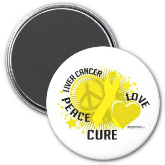 Liver Cancer PLC Magnet