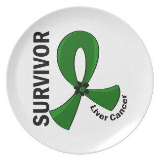Liver Cancer Survivor 12 Dinner Plate