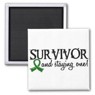 Liver Cancer Survivor 18 Magnet
