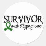 Liver Cancer Survivor 18 Round Stickers