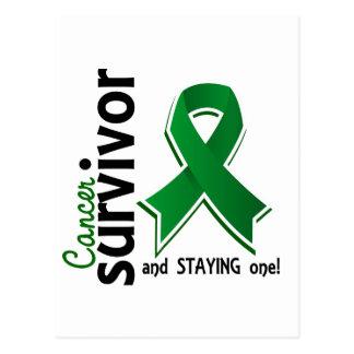 Liver Cancer Survivor 19 Postcard