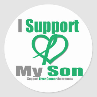 Liver CancerI Support My Son Stickers