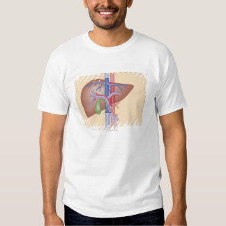 Liver Transplant Procedure Dresses