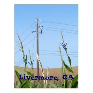 Livermore Postcard