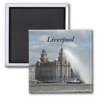 Liverpool Imán Cuadrado