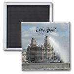 Liverpool Magnets