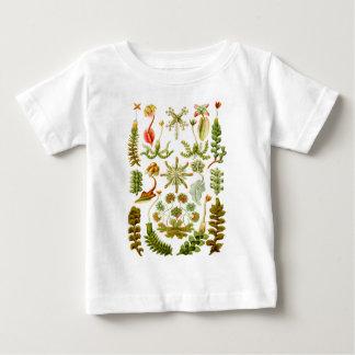Liverworts Baby T-Shirt