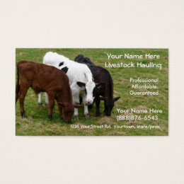 Red cow business cards templates zazzle livestock hauling cattle ranchers business card colourmoves