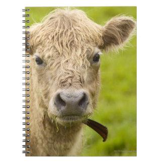 Livestock in a pasture spiral notebook