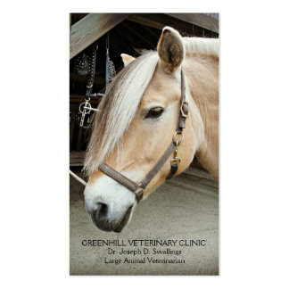 Livestock Large Animal  Horse Veterinarian Clinic Double-Sided Standard Business Cards (Pack Of 100)