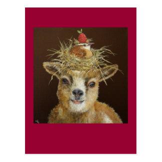 Livin alto en la postal de la cabra