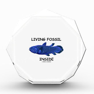 Living Fossil Inside (Coelacanth) Award