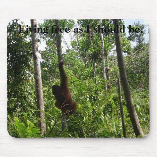 Living Free Wild Animals in Habitat Mouse Pad