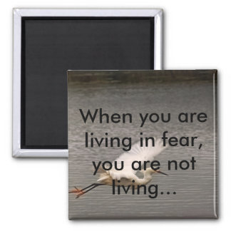 Living in fear, on a magnet