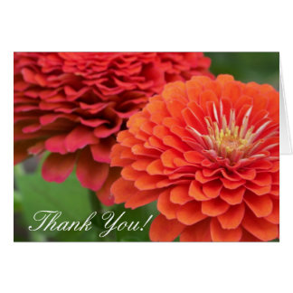 Living Lollipops, Thank You! Card