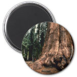 Living Mountain Refrigerator Magnet