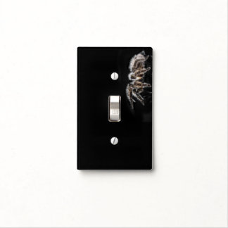 Living on the edge - Crouching Spider Black Light Switch Cover