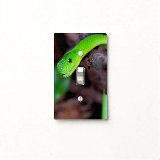 Living on the edge - Green Mamba Dark Brown Light Switch Cover