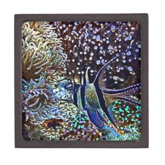 Living Reef and Fish Keepsake Box