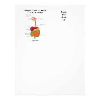 Living Today Takes Lots Of Guts Digestive System Letterhead