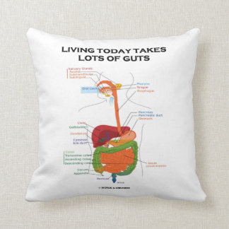 Living Today Takes Lots Of Guts Digestive System Pillows