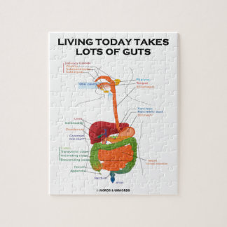Living today takes lots of guts digestive system jigsaw puzzles