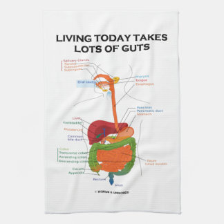 Living Today Takes Lots Of Guts Digestive System Towel
