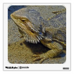 Living Under Fire - Bearded Dragon Wall Decal