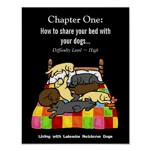 Living with Labradors Cartoon Poster