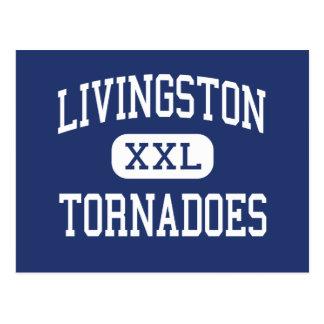 Livingston - Tornadoes - Junior - Livingston Postcard