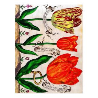Livres De Fleurs Postcard Tarjetas Postales
