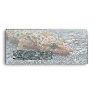 Lizard #10 Window Envelope