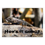 "Lizard asking ""how's it going"" greeting card"