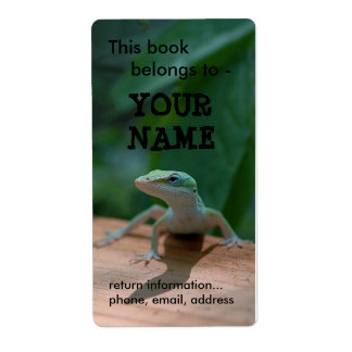 Lizard book label/plate label