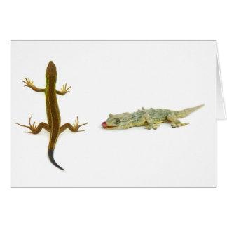 lizard card