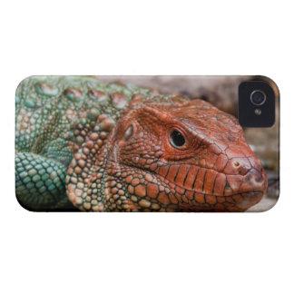 Lizard iPhone 4 Cover