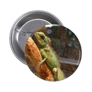Lizard Climbing a Tree Button