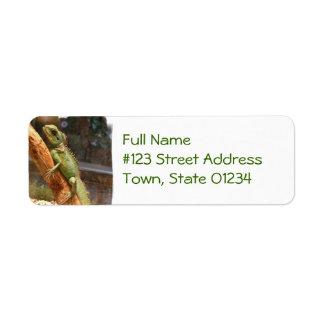 Lizard Climbing a Tree Mailing Label Return Address Label
