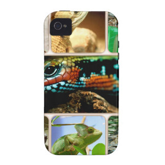 Lizard Collage Case-Mate iPhone 4 Covers