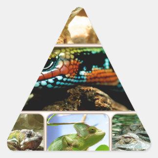Lizard Collage Sticker