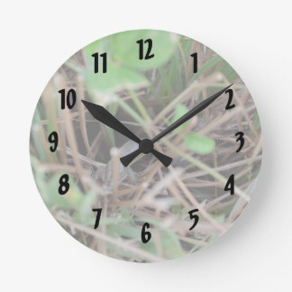 lizard hide and seek in grass reptile animal round wall clock